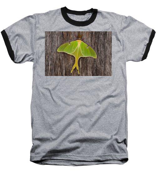 Luna Moth Baseball T-Shirt