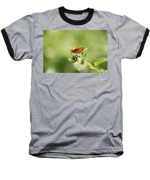 Baseball T-Shirt featuring the photograph Lunch Time by Amy Gallagher