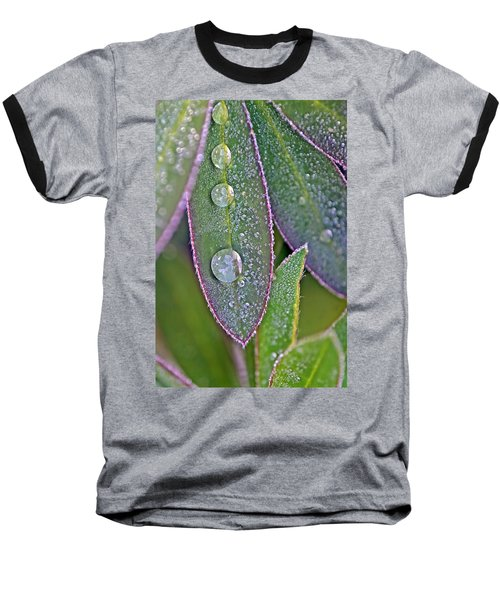 Lupin Leaves And Waterdrops Baseball T-Shirt
