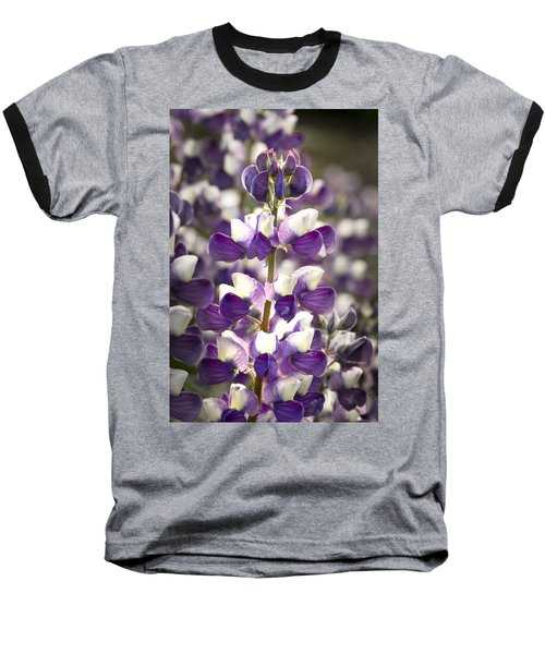 Baseball T-Shirt featuring the photograph Lupine Wildflowers by Sonya Lang