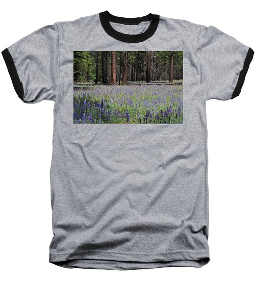 Lupines In Yosemite Valley Baseball T-Shirt by Lynn Bauer