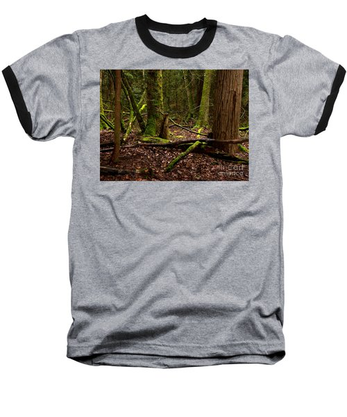 Lush Green Forest Baseball T-Shirt