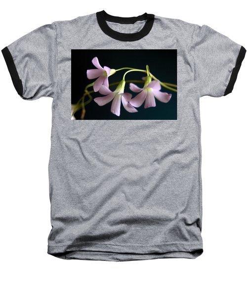 Macro Clover Baseball T-Shirt by Greg Allore