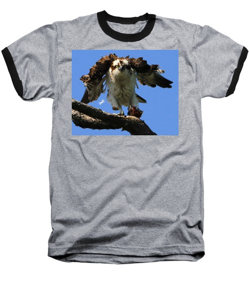 Mad Osprey Baseball T-Shirt