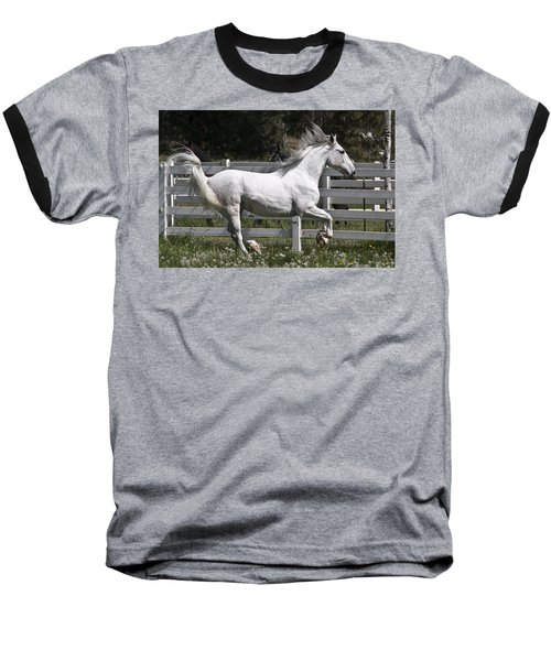 Maestoso Aurorra Baseball T-Shirt by Wes and Dotty Weber