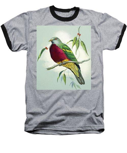 Magnificent Fruit Pigeon Baseball T-Shirt by Bert Illoss
