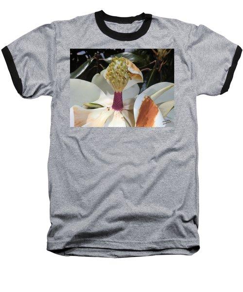 Magnolia Magnicence  Baseball T-Shirt