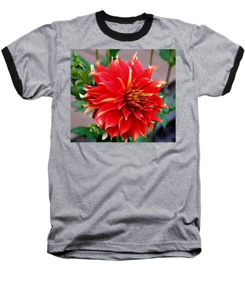 Baseball T-Shirt featuring the photograph Magnifique by Jeanette C Landstrom