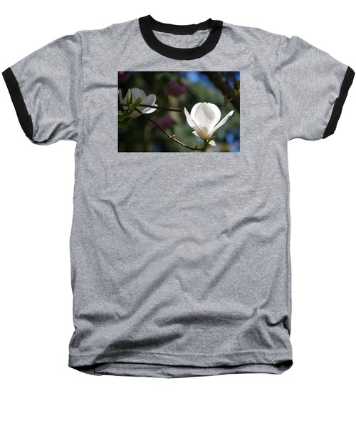 Magnolia Blossoms Baseball T-Shirt by Marilyn Wilson