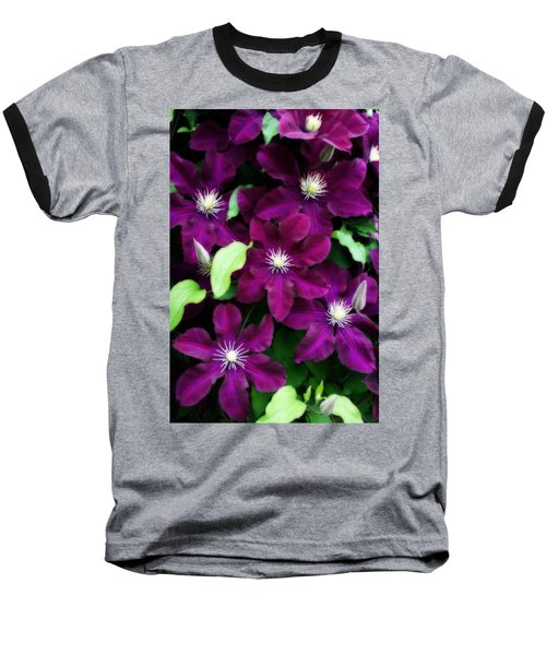 Majestic Amethyst Colored Clematis Baseball T-Shirt by Kay Novy