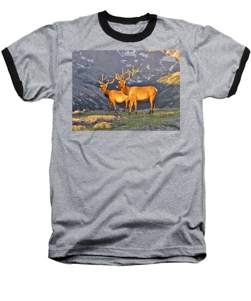 Baseball T-Shirt featuring the photograph Majestic Elk by Diane Alexander