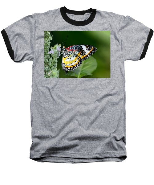 Malay Lacewing Butterfly Baseball T-Shirt