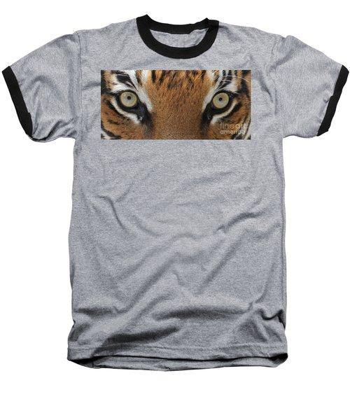 Malayan Tiger Eyes Baseball T-Shirt