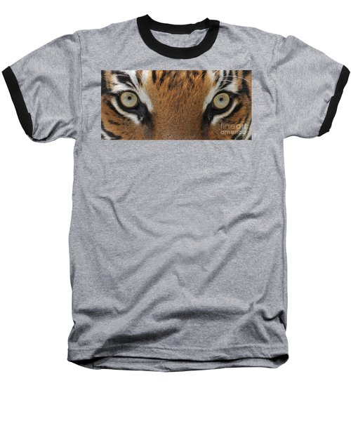 Malayan Tiger Eyes Baseball T-Shirt