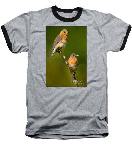 Baseball T-Shirt featuring the photograph Male And Female Bluebirds by Jerry Fornarotto
