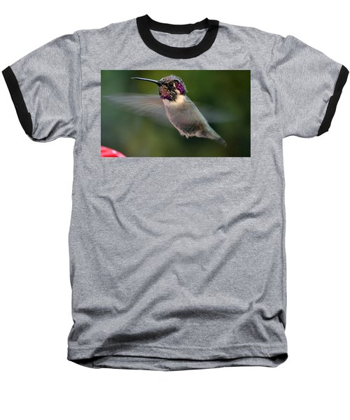 Baseball T-Shirt featuring the photograph Male Anna's In Flight by Jay Milo