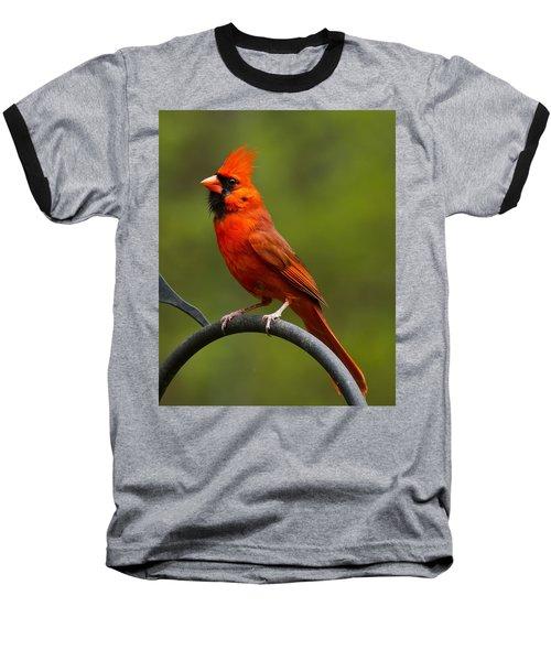 Baseball T-Shirt featuring the photograph Male Cardinal by Robert L Jackson