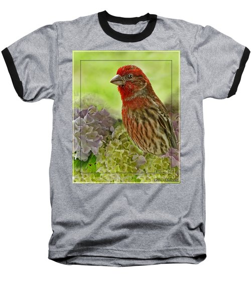 Baseball T-Shirt featuring the photograph Male Finch In Hydrangesa by Debbie Portwood