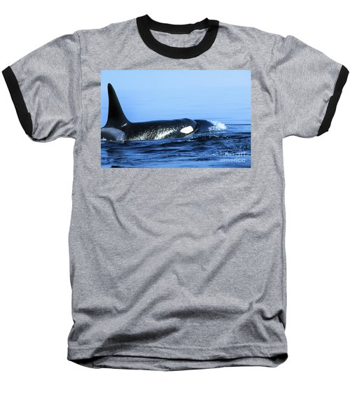 Baseball T-Shirt featuring the photograph Male Orca Off The San Juan Islands Washington 1986 by California Views Mr Pat Hathaway Archives