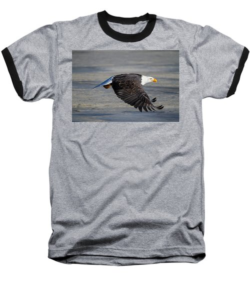 Male Wild Bald Eagle Ready To Land Baseball T-Shirt by Eti Reid