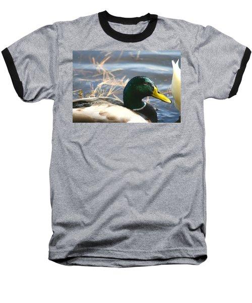 Mallard Anas Platyrhynchos Baseball T-Shirt by Neal Eslinger