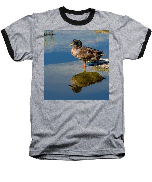 Mallard Reflection Baseball T-Shirt