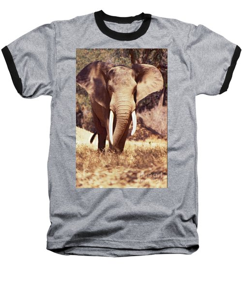 Mana Pools Elephant Baseball T-Shirt