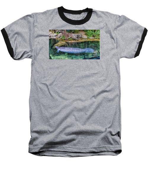 Manatee Baseball T-Shirt by Olga Hamilton