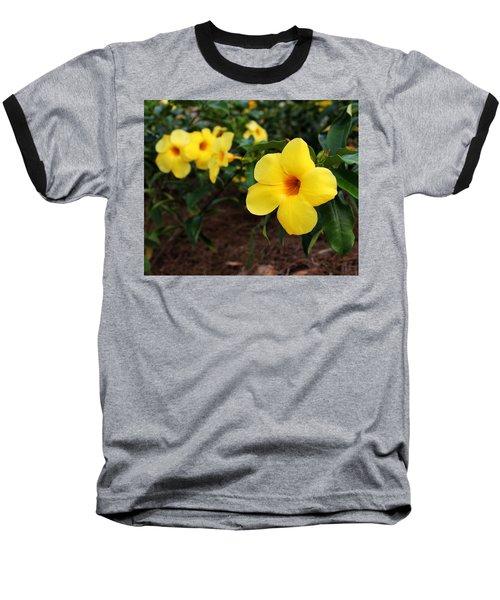 Mandevilla Baseball T-Shirt