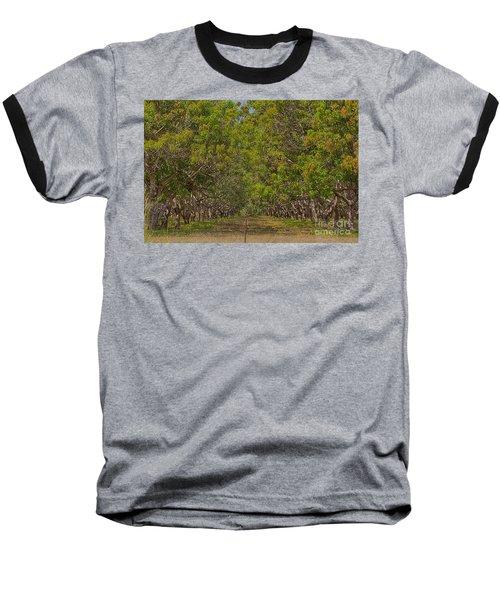 Mango Orchard Baseball T-Shirt by Douglas Barnard