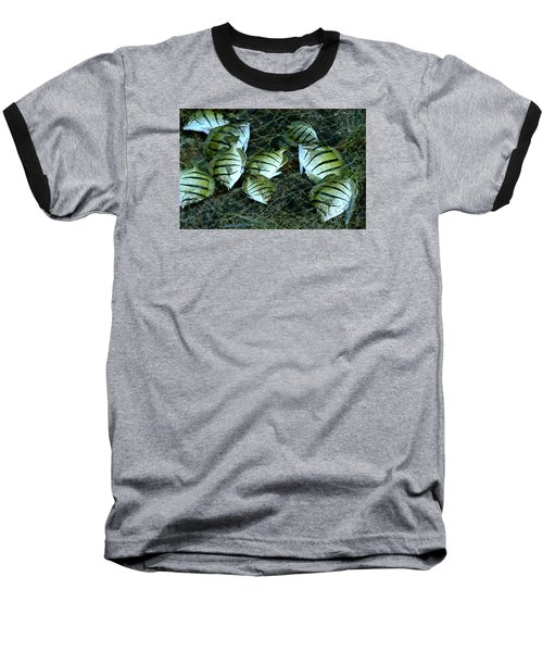 Manini Catch Baseball T-Shirt
