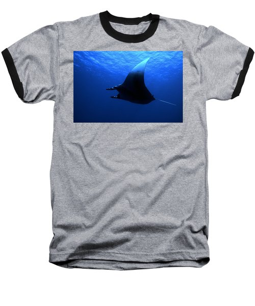 Manta Ray Baseball T-Shirt