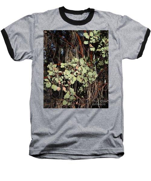 Manzanita Baseball T-Shirt