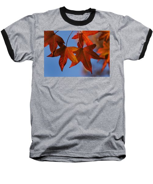 Baseball T-Shirt featuring the photograph Maple Leaves In The Fall by Stephen Anderson