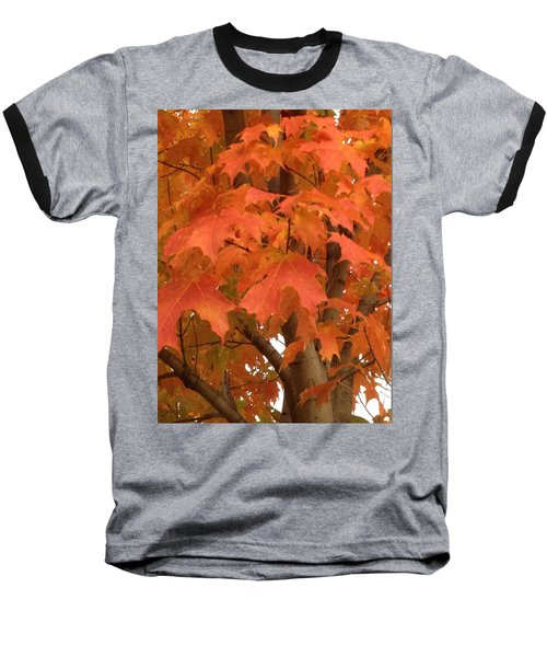 Maple Orange Baseball T-Shirt