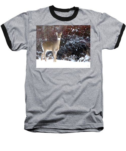 March Snow And A Doe Baseball T-Shirt