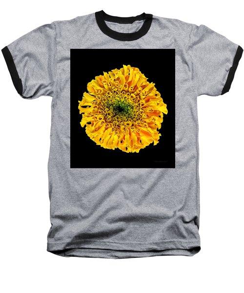 Marigold Baseball T-Shirt