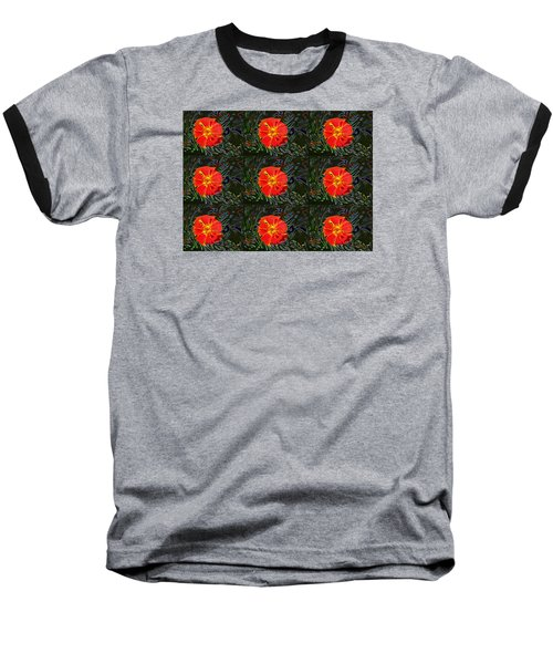 Marigold Mighty Baseball T-Shirt by Kathy Bassett