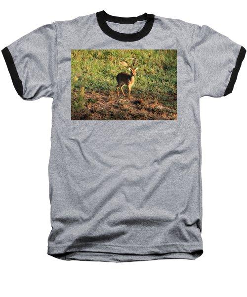 Masai Mara Dikdik Deer Baseball T-Shirt