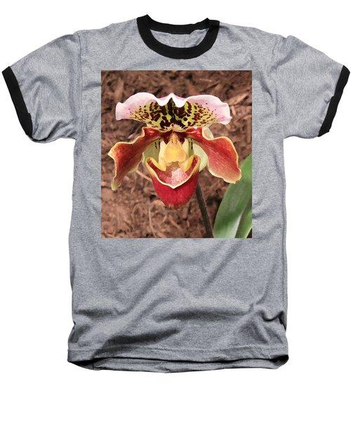 Mating Ritual Baseball T-Shirt