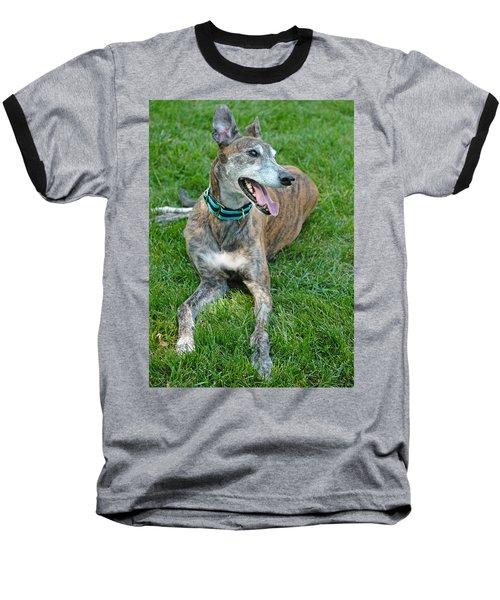Baseball T-Shirt featuring the photograph Maverick by Lisa Phillips