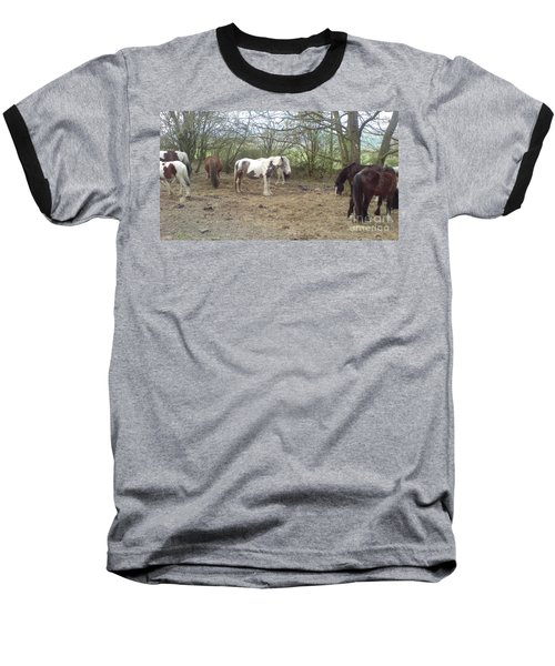 Baseball T-Shirt featuring the photograph May Hill Ponies 1 by John Williams