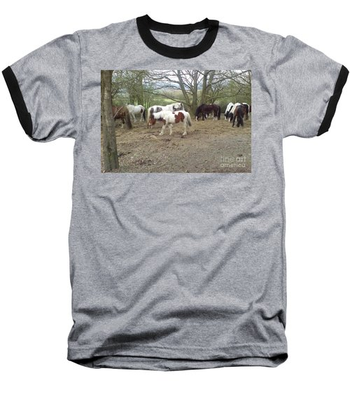 Baseball T-Shirt featuring the photograph May Hill Ponies 2 by John Williams