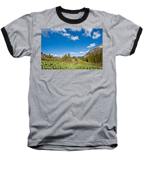 Baseball T-Shirt featuring the photograph Meadow Of False Hellebore by Jeff Goulden