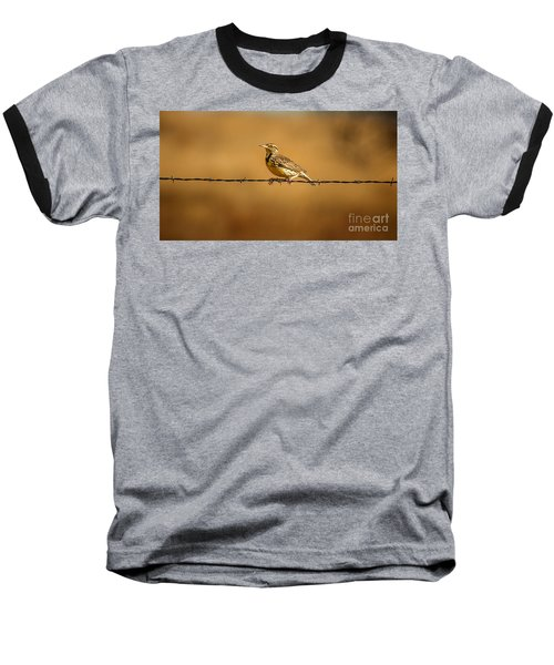 Meadowlark And Barbed Wire Baseball T-Shirt by Robert Frederick