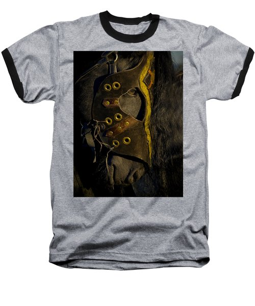 Medieval Stallion Baseball T-Shirt by Wes and Dotty Weber