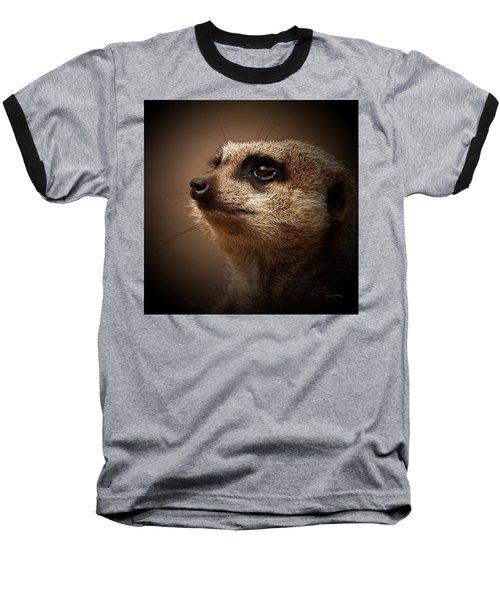 Meerkat 6 Baseball T-Shirt