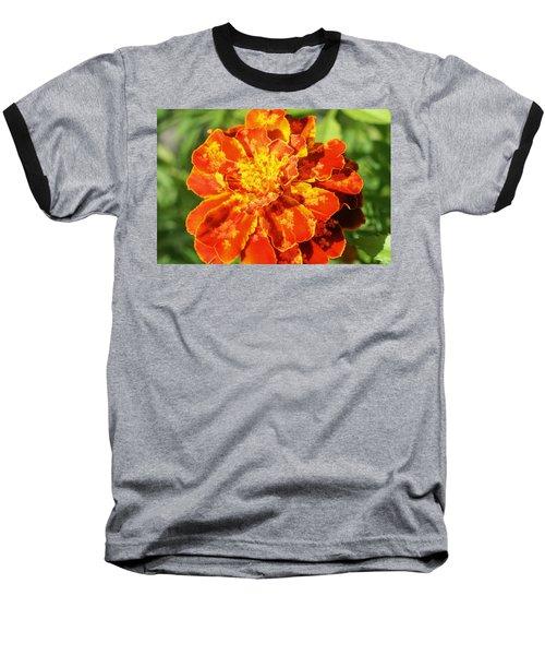 Merry Marigold Baseball T-Shirt