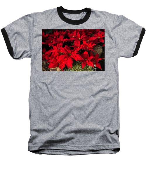 Merry Scarlet Poinsettias Christmas Star Baseball T-Shirt