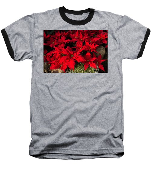 Merry Scarlet Poinsettias Christmas Star Baseball T-Shirt